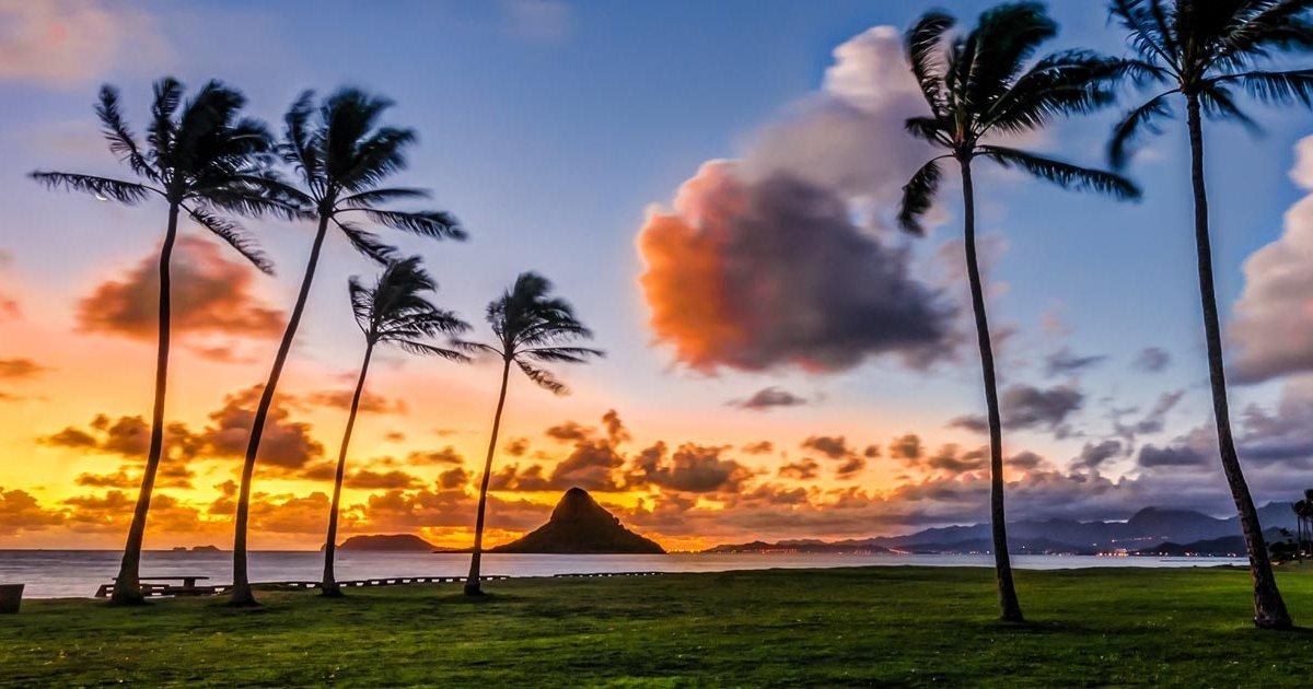 Episode #364 – Aloha